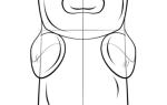 Как нарисовать бисквитного медведя Барни — пошаговая инструкция