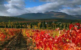 Картинки осень в Крыму