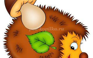 Картинки ежика для детей