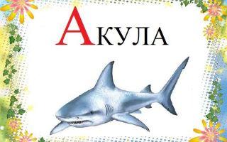 Картинки на букву «А» для детей распечатать