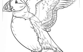 Как нарисовать Тупика поэтапно карандашом