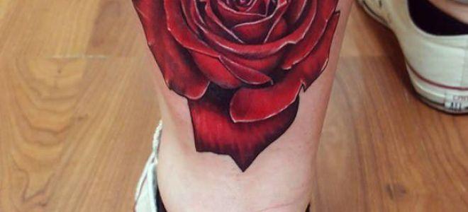 155 тату с розами: для девушек и мужчин, фото и эскизы, значение рисунка