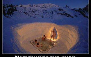 Смешные картинки про баню