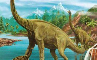 Картинки брахиозавр