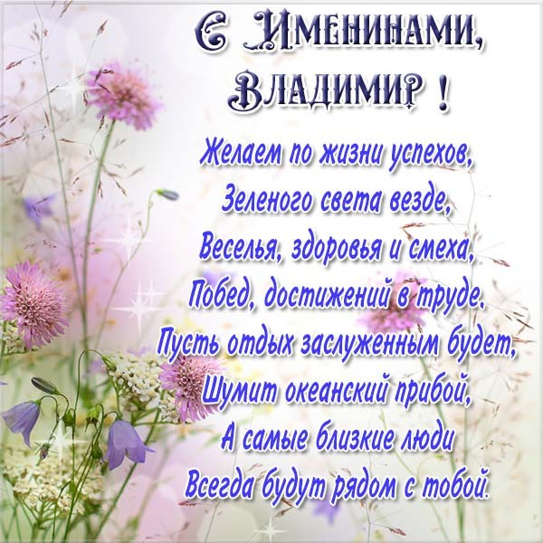 картинках к дню рождения с именем владимир самый известный