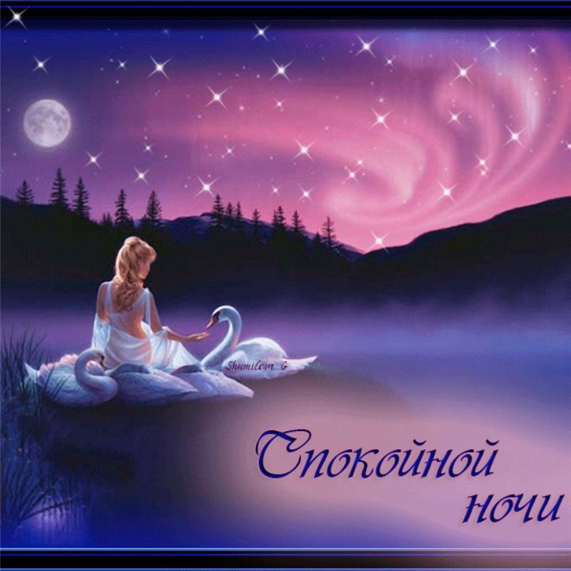 Спокойной ночи светлана картинка
