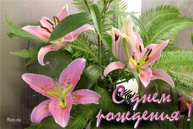 поздравления для дочки лилиями