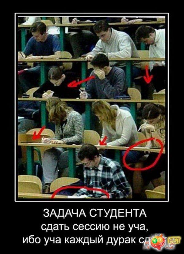 Смешные картинка про студентов, картинки