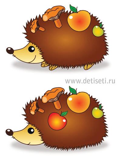 Тортов, ежик с грибочками картинки для детей